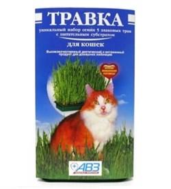 Травка для кошек (лоток) - фото 5021