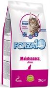 Forza Полноценный сухой корм для кошек Рыба 2кг